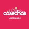 Cosechas guadalupe